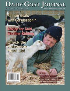 goat_article_voorpagina